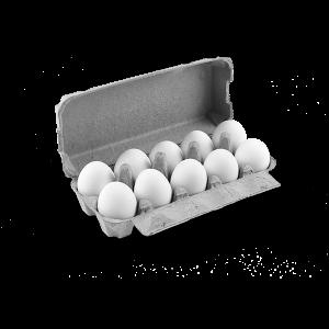 Бели Яйца Размер L Артемида-71 10 бр