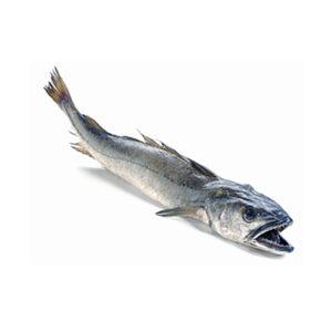 Прясно Бакаляро ААА от Balkan Fish 600-800 гр
