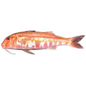 Пресен Барбун от Balkan Fish 500 гр
